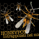Honeypot, trappola per cracker