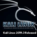 Kali Linux 2019.3 Rilasciato con nuovi strumenti di hacking