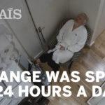 Julian Assange spiato per anni nell'Ambasciata a Londra